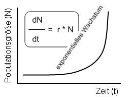 https://www.bio-kompakt.de/images/stories/oekologie/exponentielles_wachstum.jpg